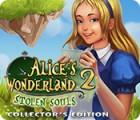 Alice's Wonderland 2: Stolen Souls Collector's Edition игра