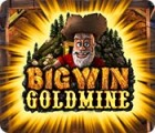 Big Win Goldmine игра