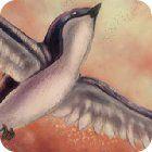 Birds Defender игра