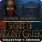 Cursed Memories: The Secret of Agony Creek Collector's Edition игра