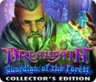Dreampath: Guardian of the Forest Collector's Edition игра