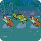 Frog Tag игра