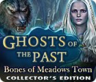 Ghosts of the Past: Bones of Meadows Town Collector's Edition игра