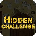 Hidden Challenge игра