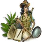 В поисках затерянного храма игра