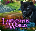 Labyrinths of the World: The Wild Side игра