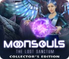 Moonsouls: The Lost Sanctum Collector's Edition игра
