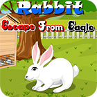 Rabbit Escape From Eagle игра