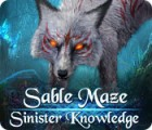 Sable Maze: Sinister Knowledge Collector's Edition игра