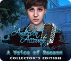 The Andersen Accounts: A Voice of Reason Collector's Edition игра