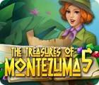 The Treasures of Montezuma 5 игра