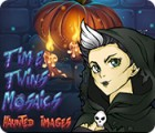 Time Twins Mosaics Haunted Images игра