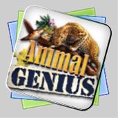 Animal Genius игра