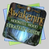 Awakening: Moonfell Wood Strategy Guide игра