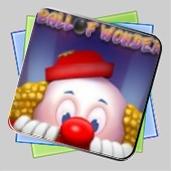 Ball of Wonder игра