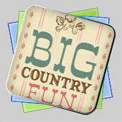 Big Country Fun игра