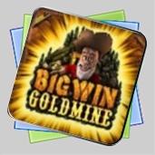 Big Win Goldmine игра