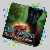 Dark Romance: The Monster Within Collector's Edition игра