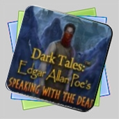 Dark Tales: Edgar Allan Poe's Speaking with the Dead Collector's Edition игра