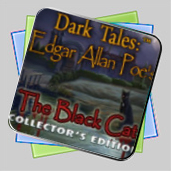Dark Tales: Edgar Allan Poe's The Black Cat Collector's Edition игра