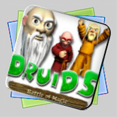 Druid's Battle of Magic игра