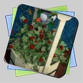 Gardener's Mystery Escape игра