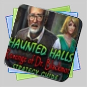 Haunted Halls: Revenge of Doctor Blackmore Strategy Guide игра