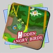 Hidden Angry Birds игра