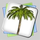 Lost Island Adventure игра