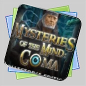 Mysteries of the Mind: Coma Collector's Edition игра