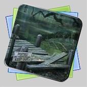 Mystery Case Files 2010 игра