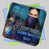 Mystery Trackers: Darkwater Bay Collector's Edition игра