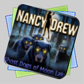 Nancy Drew: Ghost Dogs of Moon Lake игра