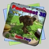 PacQuest 3D игра