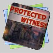 Protect Witness игра