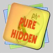 Pure Hidden. Просто прятки игра