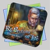 Reflections of Life: Dream Box Collector's Edition игра