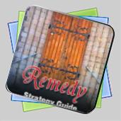 Remedy Strategy Guide игра