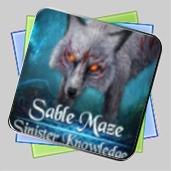Sable Maze: Sinister Knowledge игра