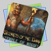 Secrets of the Dark: Temple of Night игра