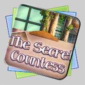 The Secret Countess игра