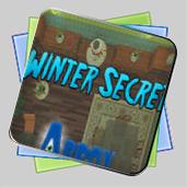 Winter Secret игра