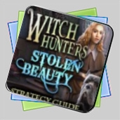 Witch Hunters: Stolen Beauty Strategy Guide игра
