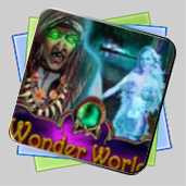 Wonder World игра