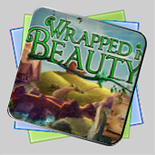 Wrapped in Beauty игра