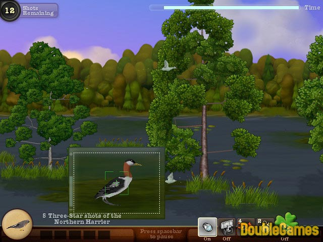Free Download Snapshot Adventures: Secret of Bird Island Screenshot 1